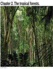 Tropical Forest Note