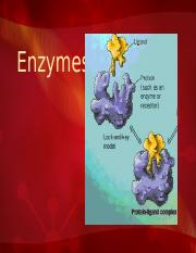 Enzymes Mcguire.pptx