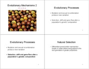Lecture 6 - Chapter 23, Sections 3 and 4, - Evolutionary Mechanisms