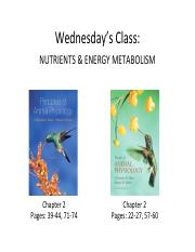Lecture+13+-+Nutrition+and+Energy+Metabolism+I (4).pdf