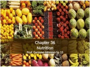 Fund.II.Sp15Chapter36(1)