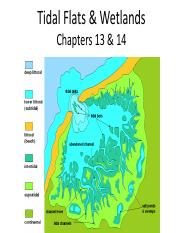 Ch13+14_Tidal flats and wetlands.pdf