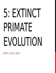 5 Extinct Primate evolution for TED.pptx