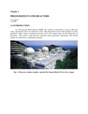 2. Pressurized Water Reactors