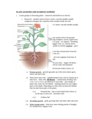 How Plants Get Nutrients