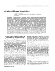 Origins of flower morphology