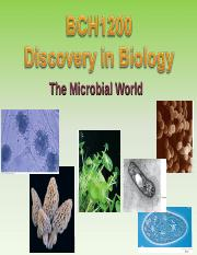 MicrobialWorld.ppt