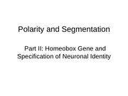 4-POLARITY-current_research