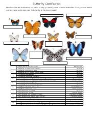 Marisol Ponce - Butterfly Dichotomous Key.pdf