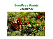 Lecture 12 -Seedless plants