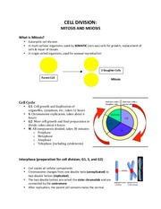 Mitosis and Meiosis Notes