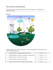 carbon_worksheet science 4.05.doc