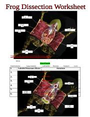 Virtual Frog Dissection Worksheet.doc - *Identify the ...
