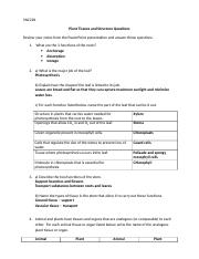 SNC2D Bio13 Plant Tissues&Structures - Worksheet Answers.doc