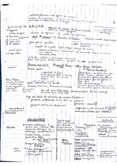 Lecture Notes on French Cinema History