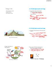 chapter 4 notes.pdf