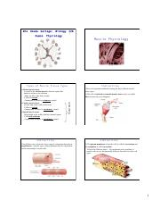 8Ch12MusclePhysiology.pdf
