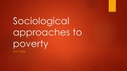 Sociological approaches to poverty