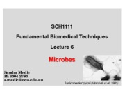 Lecture 6 - Microbes