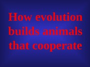 animal cooperation TOPIC 5 2-7-12 UPLOAD