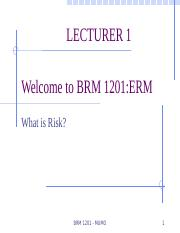Lecture 1 - BRM 2101 Defination and Classification of Risk.pptx