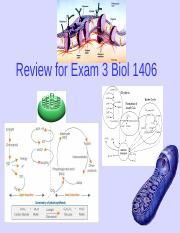 Review for Exam 3(1)