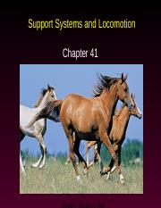 AP Ch. 41--Support Systems & Locomotion