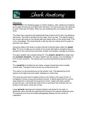 [PDF] Dogfish dissection student guide and answers - read ...