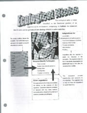 Ecological Niche Package Worksheets