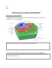 Cell Structure and Function LAB.docx