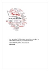 Dynamic_capabilties_briefing_paper