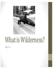 -#1 What is Wilderness-.pdf
