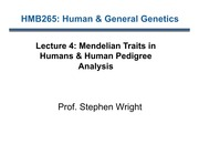 Mendelian Traits in Humans & Human Pedigree Analysis