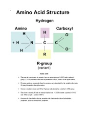 Ch 3 Carbon Atoms and Molecules Rutgers bio 101 pg 10