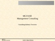 02 The Consulting Industry