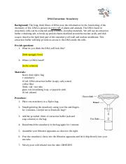 Strawberry DNA Extraction Worksheet(1).docx - Strawberry ...