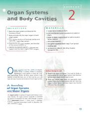 Lab Exercise 2 Organ Systems and Body Cavities