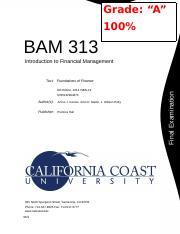 BAM 313 - Financial Management (Final).DOCX