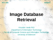 Image Database Retrieval