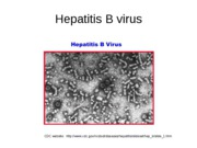 9-29_1_PM_HepatitisB