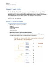 ASM 301_Module 2 Study Guide.docx
