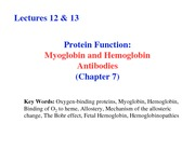 Lecture 12 & 13