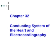 Chapter 32 Heart  Physiology