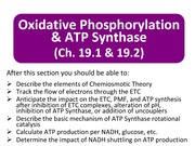 Topic+17_OxPhos_ATPSynthase (1)