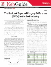Basics of EPDs in the Beef Industry-1