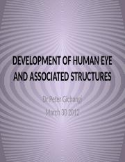 12.DEVELOPMENT OF HUMAN EYE AND ASSOCIATED STRUCTURES.pptx
