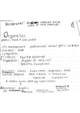Organelles notes