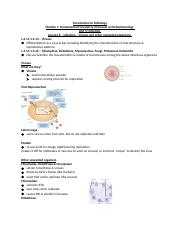 Lecture 8 - Infection - Viruses and other unwanted organism .docx