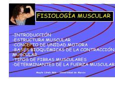 Fisiomusclar1 Pdf Fisiología Muscular Introducción