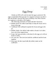 Egg Drop.doc